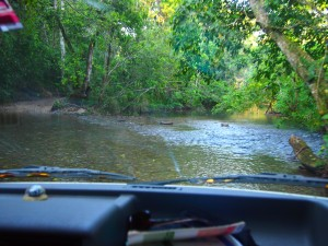 San ignacio to barton creek portland to panama for Barton creek nursery