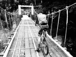 Bridge pause